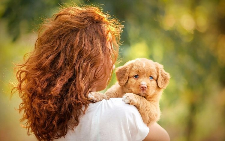 girl, mood, dog, puppy, blue eyes, redhead