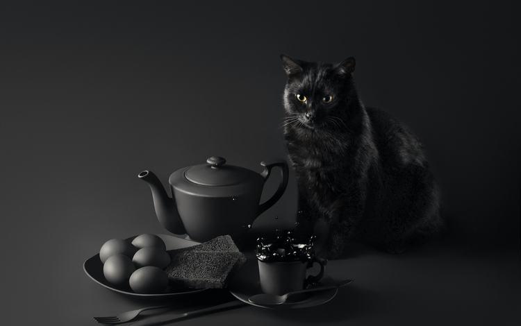 eyes, background, muzzle, mustache, cat, look, table, breakfast, black cat, sanket khuntale