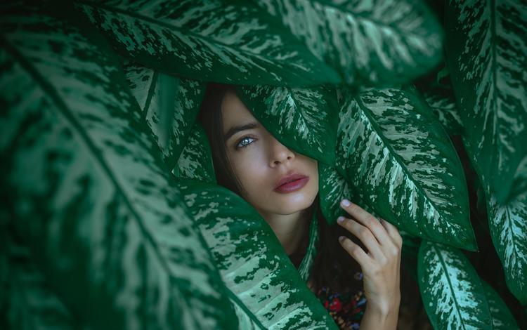 природа, surabhi gupta, листья, девушка, портрет, взгляд, модель, лицо, лена, nature, leaves, girl, portrait, look, model, face, lena