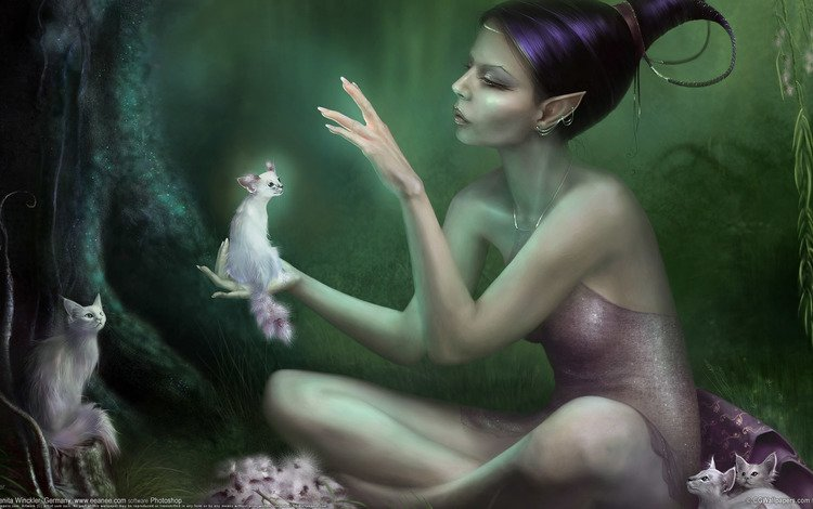 forest, girl, fairy, cats, elf, elfika
