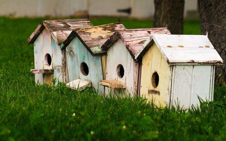 трава, домики, крупный план, птичьи домики, скворечники, grass, houses, close-up, bird houses, birdhouses
