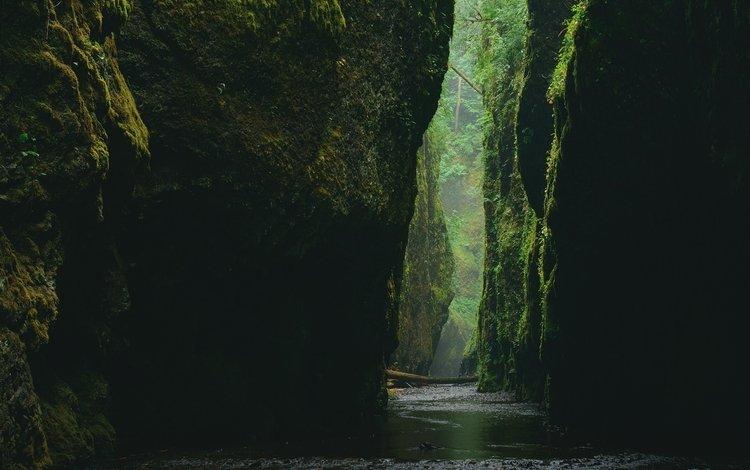 вода, камни, каньон, ущелье, мох, water, stones, canyon, gorge, moss
