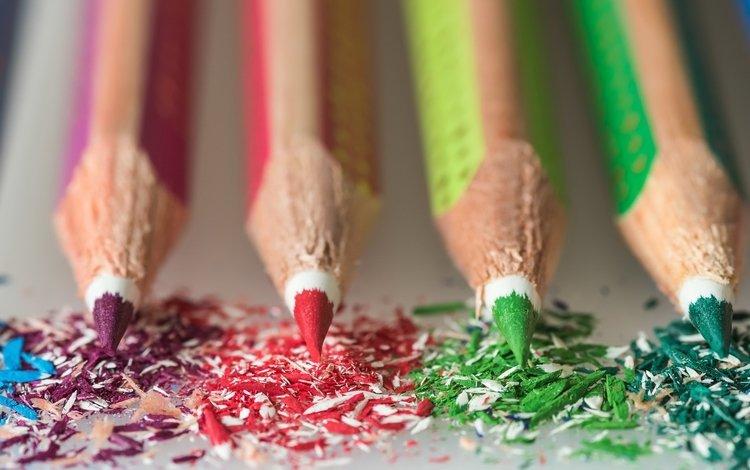 макро, фон, разноцветные, цвет, карандаши, цветные карандаши, macro, background, colorful, color, pencils, colored pencils