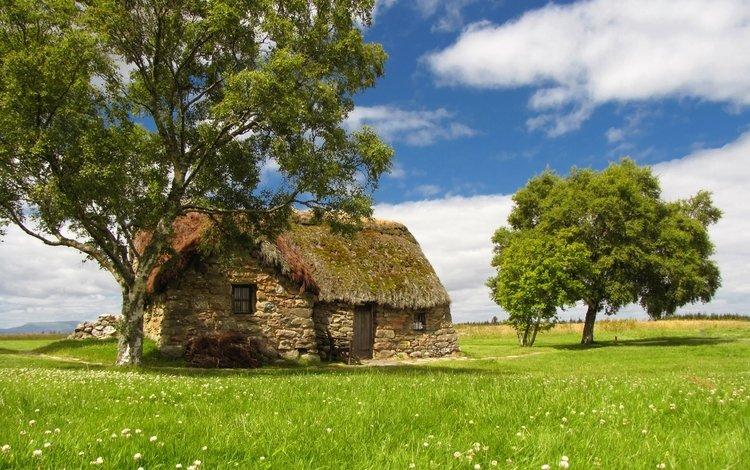 небо, трава, деревья, лето, домик, каменный, полевые цветы, лужайка, the sky, grass, trees, summer, house, stone, wildflowers, lawn