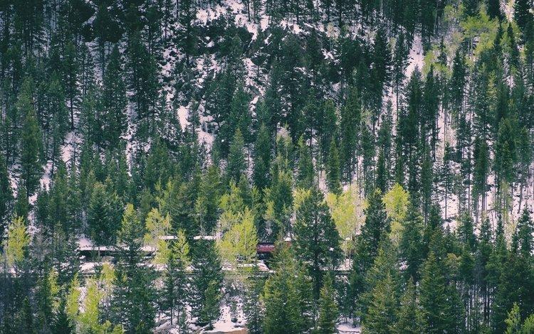 деревья, горы, снег, железная дорога, холм, trees, mountains, snow, railroad, hill