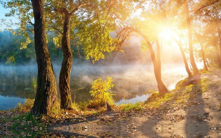 вода, река, природа, берег, утро, туман, осень, water, river, nature, shore, morning, fog, autumn