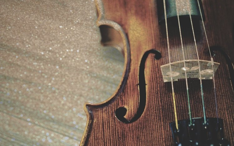 violin, music, strings, musical instrument