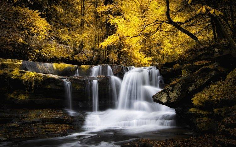 река, лес, водопад, осень, поток, каскад, river, forest, waterfall, autumn, stream, cascade