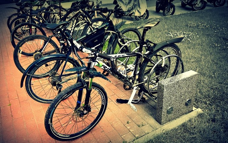 трава, настроение, город, спорт, велосипед, одых, велопаркинг, велоспорт, grass, mood, the city, sport, bike, vacations, bicycle, cycling