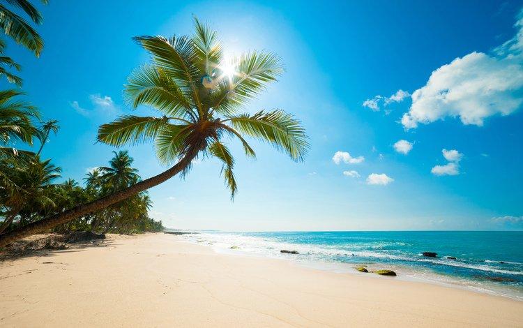 море, пляж, тропики, карибы, sea, beach, tropics, caribbean