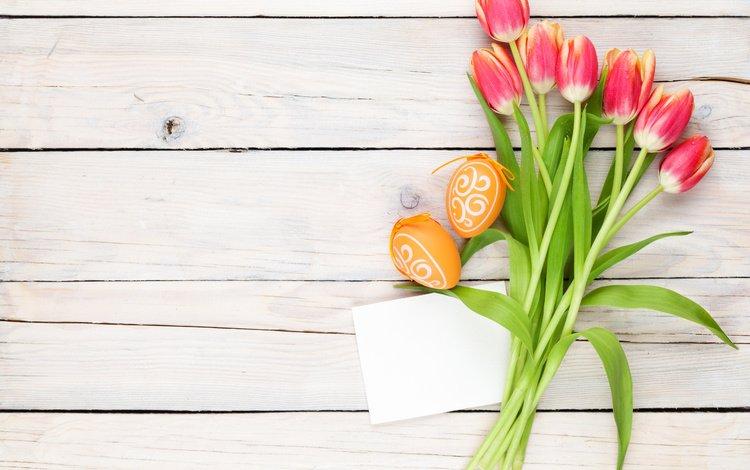 тюльпаны, пасха, tulips, easter