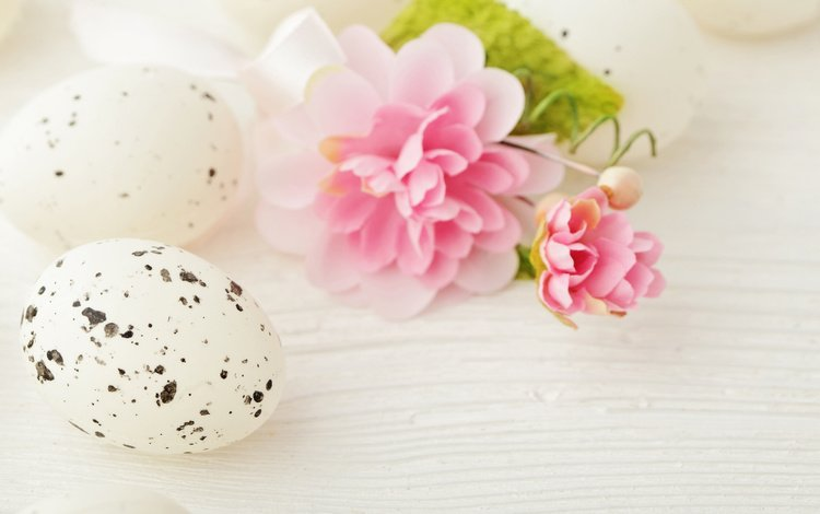 пасха, яйца, камелия, easter, eggs, camellia