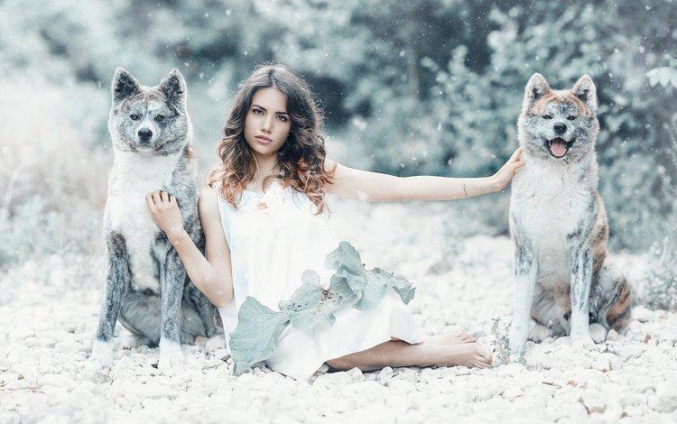 girl, mood, friendship, friends, dogs, akita, alessandro di cicco