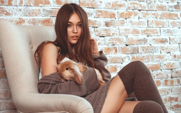 girl, model, stockings, rabbit, brown hair