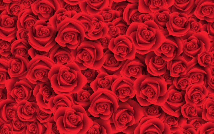 flowers, buds, roses, petals, red