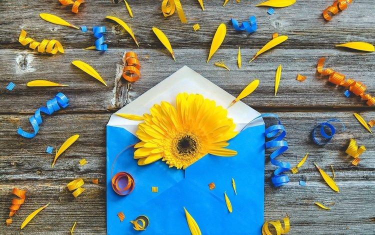 цветок, бумага, конверт, flower, paper, the envelope