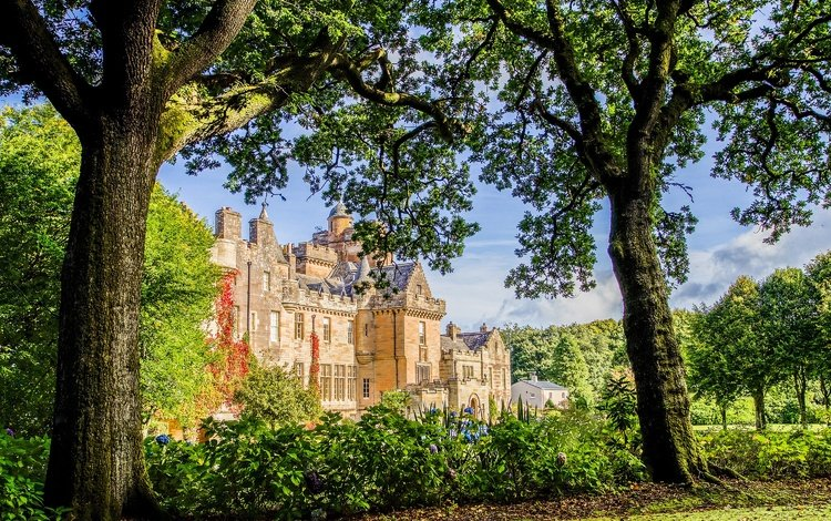 flowers, trees, the sun, greens, branches, the bushes, castle, garden, scotland