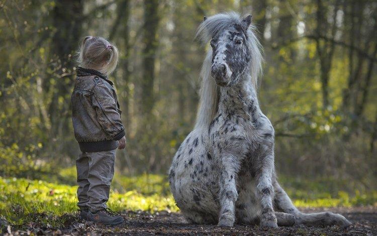 trees, nature, children, girl, pony, mane, horse