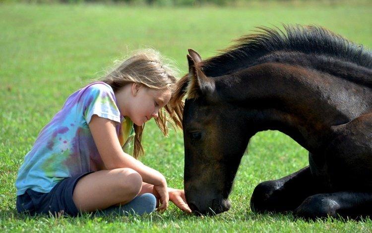 horse, grass, children, girl, animal, friends, foal