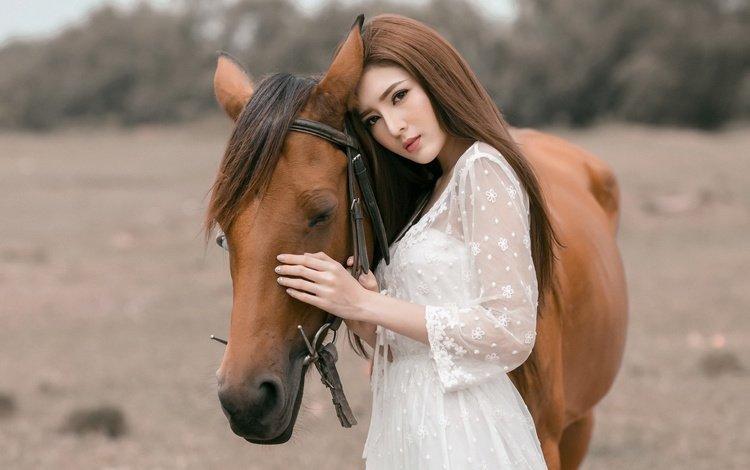 лошадь, девушка, взгляд, волосы, лицо, конь, грива, азиатка, белое платье, white dress, horse, girl, look, hair, face, mane, asian