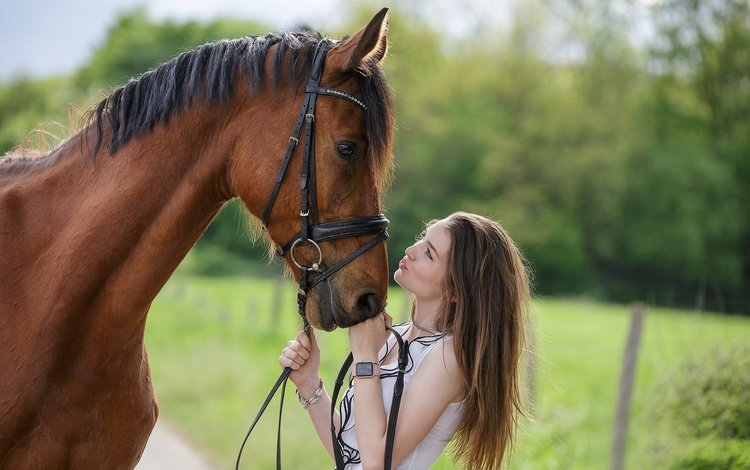 horse, girl, profile, mane, friends