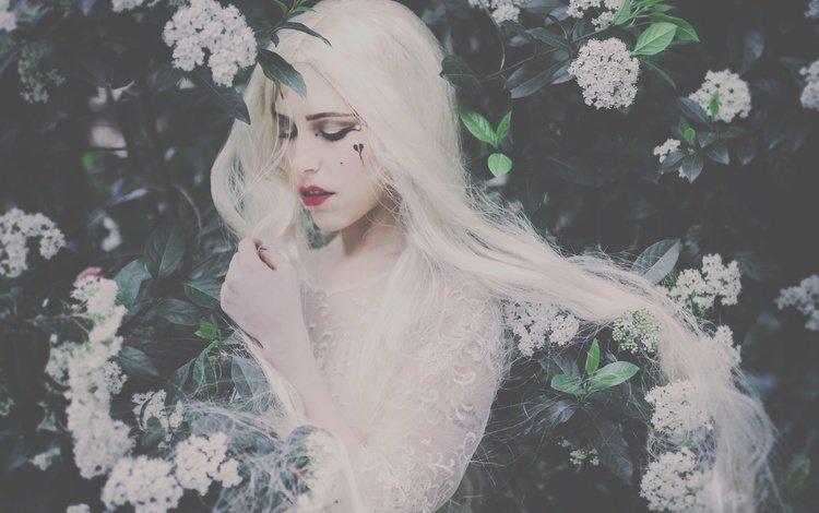 девушка, настроение, кусты, макияж, цветки, длинные волосы, белые волосы, girl, mood, the bushes, makeup, flowers, long hair, white hair