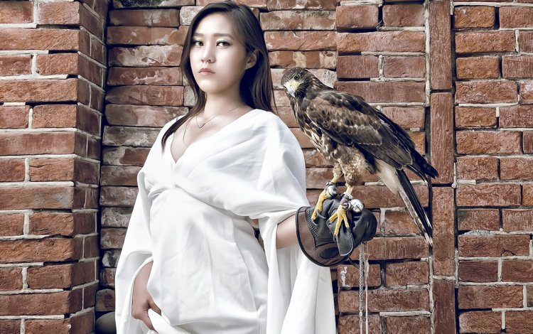 девушка, поза, взгляд, птица, волосы, азиатка, сокол, girl, pose, look, bird, hair, asian, falcon