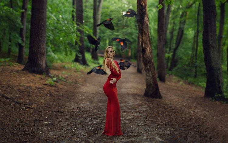 trees, forest, girl, blonde, birds, creative, red dress, long hair