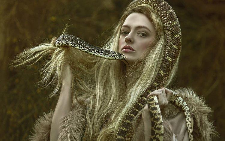 girl, fantasy, snake, hair, character, photoshoot, agnieszka lorek