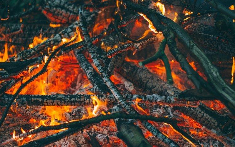 flame, fire, coal, the fire, ash