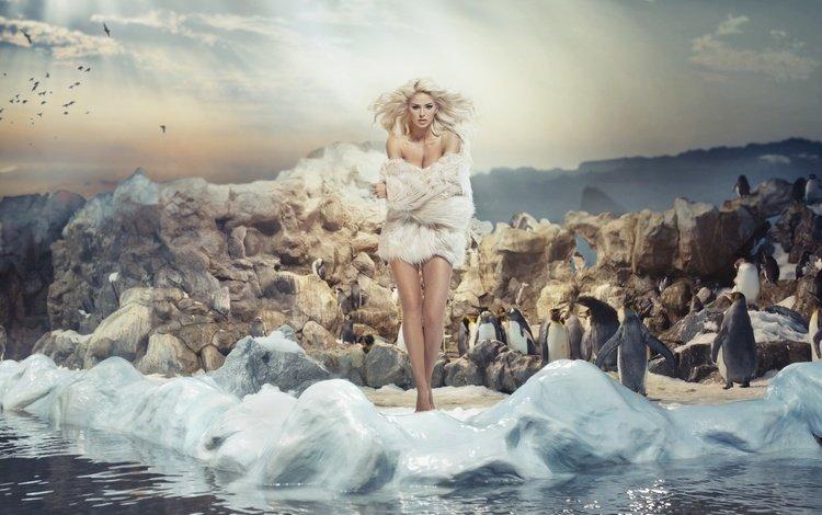 girl, blonde, model, birds, hair, makeup, hairstyle, fur, penguins, photoshoot, monika synytycz