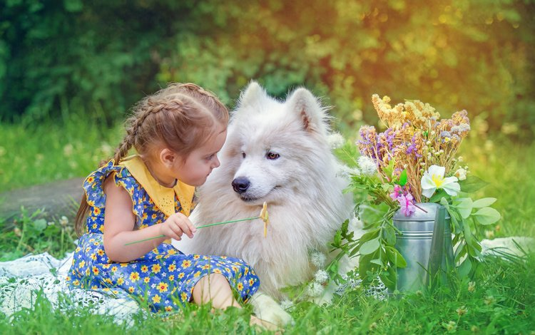 flowers, grass, nature, dog, children, girl, animal, friends