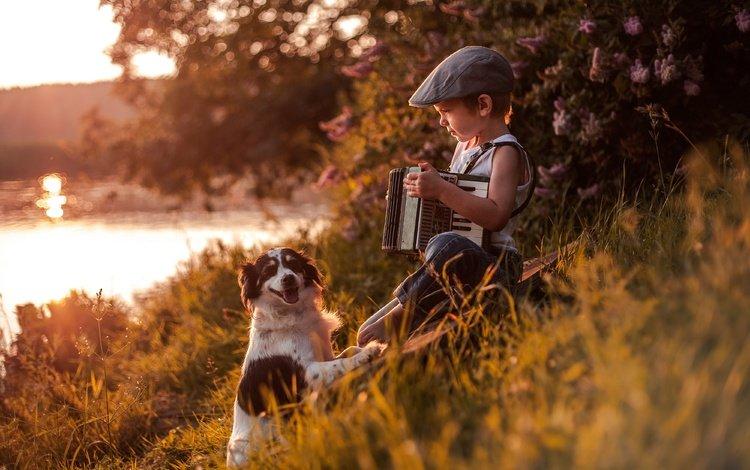river, dog, boy, friends, cap, accordion