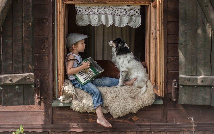 dog, window, boy, friends, cap, accordion