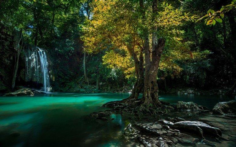 вода, дерево, камни, водопад, таиланд, water, tree, stones, waterfall, thailand
