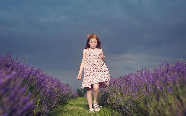 the sky, flowers, grass, girl, dress, flower, lavender, children, path, the way, child
