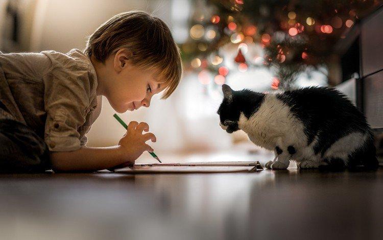 рисунок, дружба, огни, карандаш, настроение, на полу, кошка, iwona_podlasinska, дети, ребенок, мальчик, животное, figure, friendship, lights, pencil, mood, on the floor, cat, children, child, boy, animal