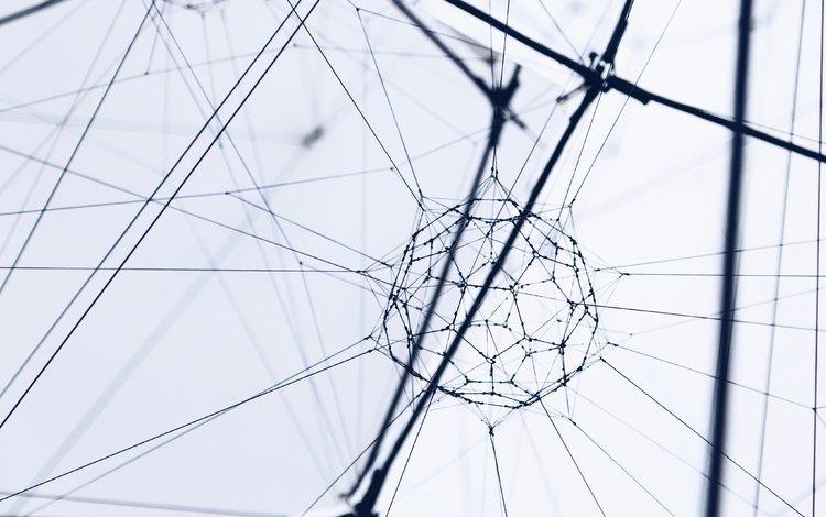form, mesh, plexus