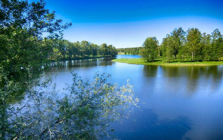 небо, деревья, вода, озеро, река, природа, пейзаж, швеция, the sky, trees, water, lake, river, nature, landscape, sweden