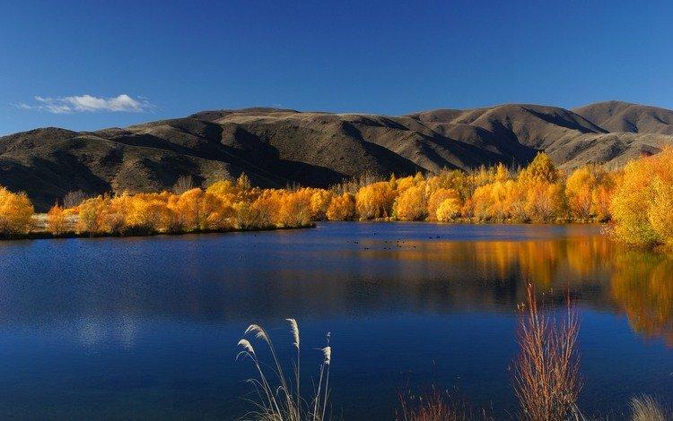 небо, новая зеландия, облака, деревья, озеро, горы, природа, пейзаж, осень, the sky, new zealand, clouds, trees, lake, mountains, nature, landscape, autumn