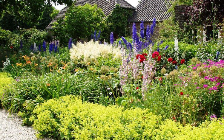 цветы, лужайка, трава, цветник, сад, луг, дом, растение, двор, кустарник, flowers, lawn, grass, flower garden, garden, meadow, house, plant, yard, shrub
