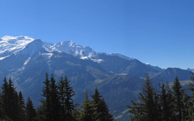 горы, снег, лес, высота, mountains, snow, forest, height