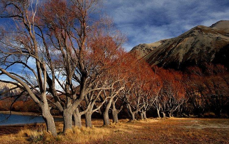небо, облака, деревья, горы, природа, пейзаж, осень, the sky, clouds, trees, mountains, nature, landscape, autumn