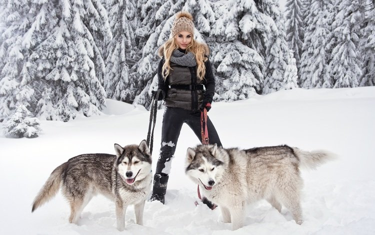 снег, собаки, лес, поводок, зима, девушка, поза, блондинка, хаски, порода, snow, dogs, forest, leash, winter, girl, pose, blonde, husky, breed