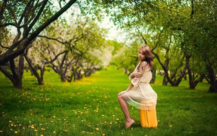 трава, чемодан, деревья, босиком, девушка, взгляд, сад, сидит, волосы, лицо, grass, suitcase, trees, barefoot, girl, look, garden, sitting, hair, face
