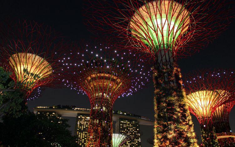 свет, достопримечательность, ночь, сингапур, деревья, креативность, огни, дизайн, азия, фейерверк, освещение, light, attraction, night, singapore, trees, creativity, lights, design, asia, fireworks, lighting