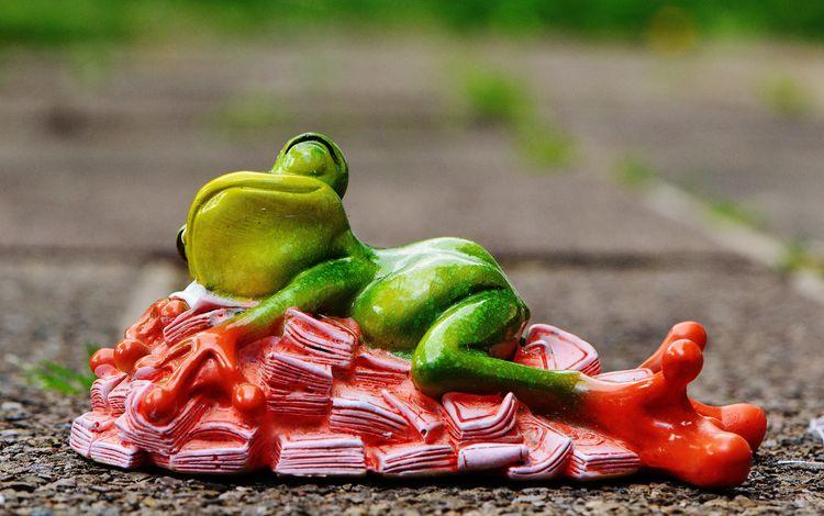 сон, игрушка, лягушка, деньги, украшение, фигурка, сувенир, sleep, toy, frog, money, decoration, figure, souvenir