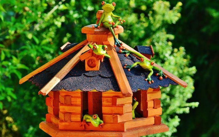 зелень, дом, домик, крыша, лягушки, сувенир, greens, house, roof, frogs, souvenir