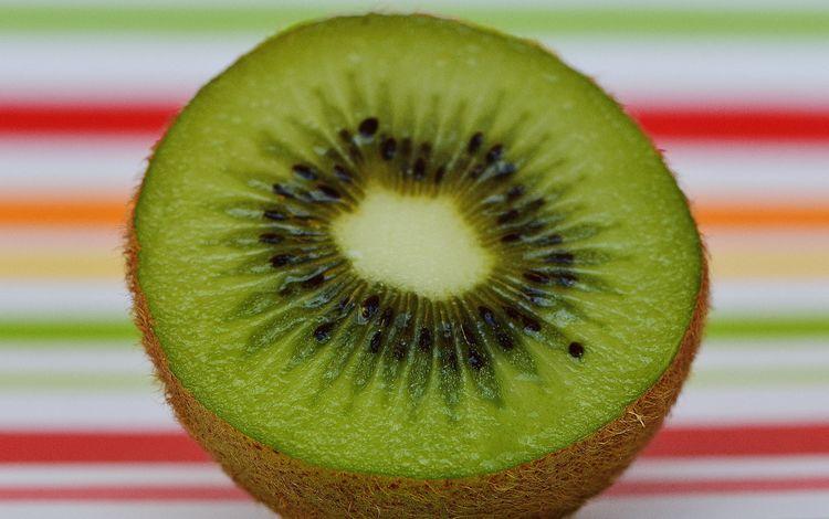 фрукт, киви, крупным планом, половинка, fruit, kiwi, closeup, half