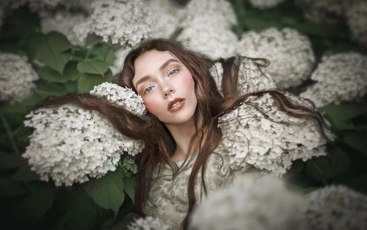 цветы, девушка, взгляд, модель, волосы, лицо, макияж, klaudia kaczmarek, flowers, girl, look, model, hair, face, makeup